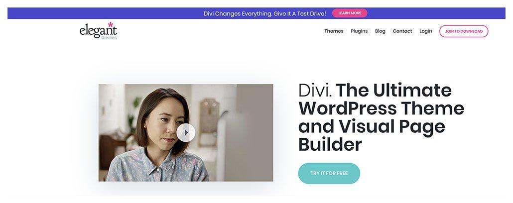 divi themes banner
