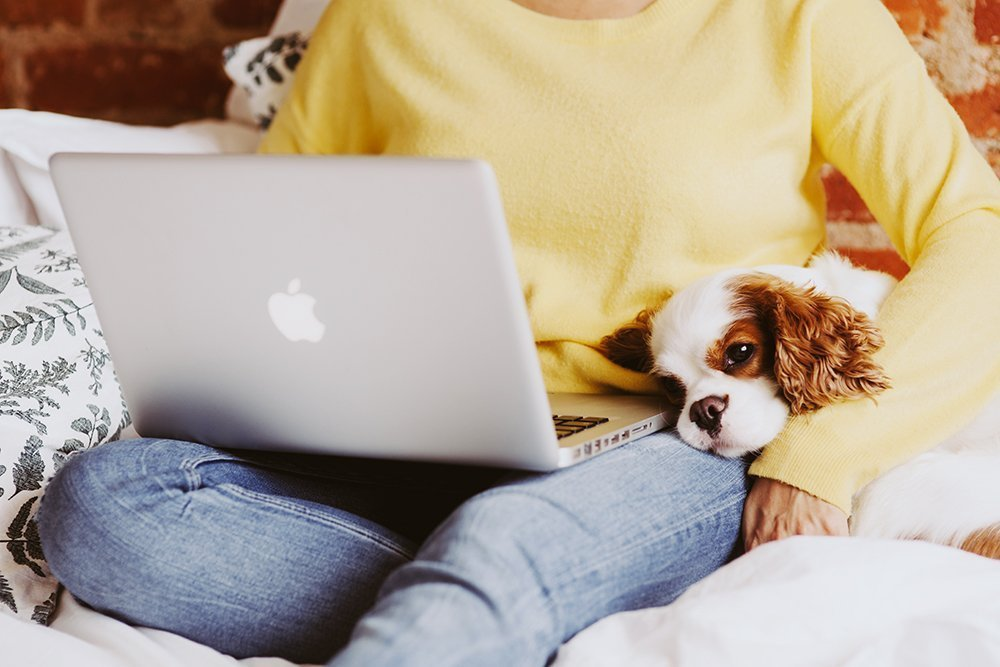 Woman holding laptop with dog
