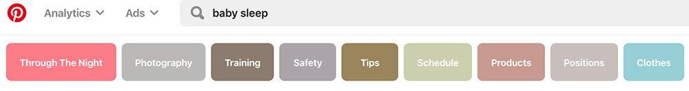 Screenshot of Pinterest Search Bar