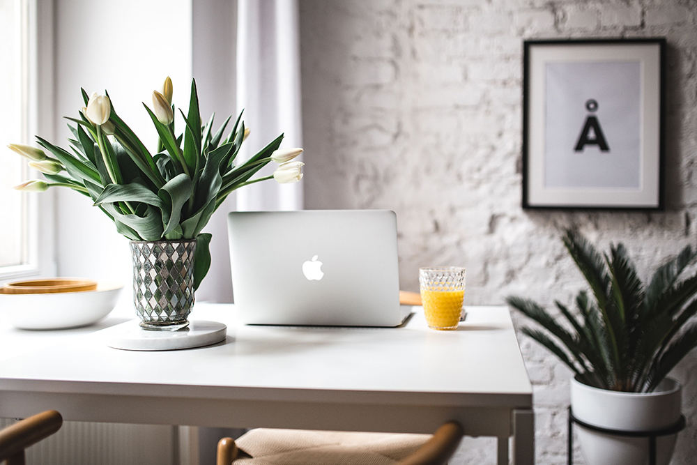 computer desk with pot plants and glass of orange juice