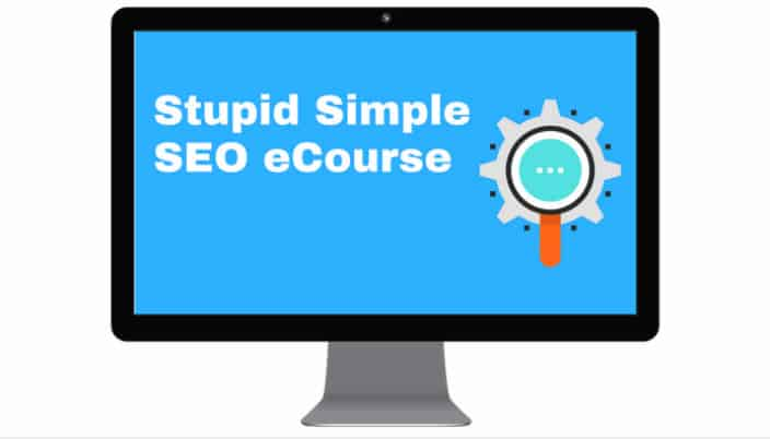 Stupid Simple SEO course